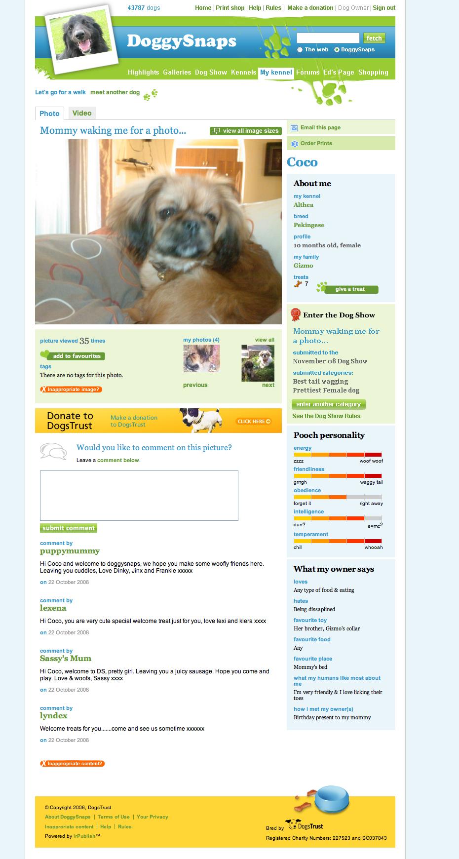 DoggySnaps - Dod page