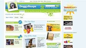 Doggy Snaps, Dogs Trust